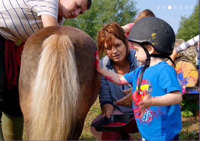 horses & h