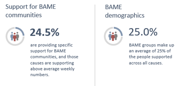 support for bame communities