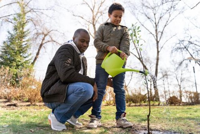 seeds for change environment tree planting